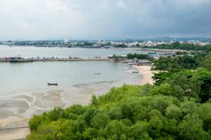 Maharashtra government to remove 1,000 illegal houses on mangrove land