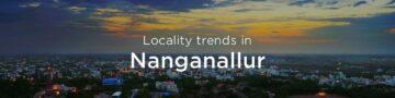 Nanganallur property market: An overview