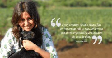 iKheti: Grow your own edible garden, at home