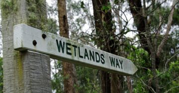 Centre notifies new rules for preservation of wetlands