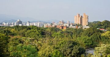 Can Mumbai afford the environmental damage caused by Aarey deforestation?