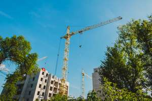 South Delhi redevelopment: Will plant two lakh trees, for felling 14,000, says NBCC