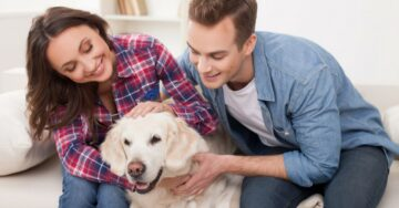 Tips to keep your home free of pet odour, during the monsoons