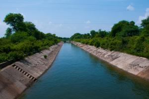 Haryana supplying contaminated water to Delhi: DJB vice-chairman