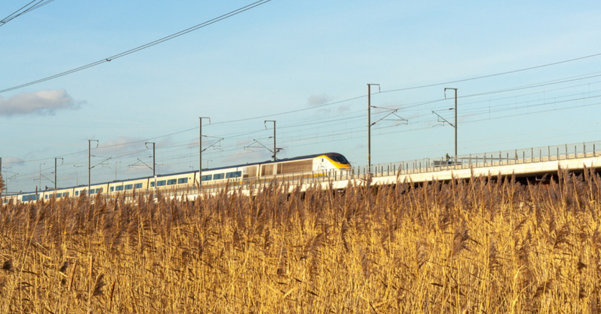 Bullet Train: Gujarat acquires 571 of 714 hectares required for the project
