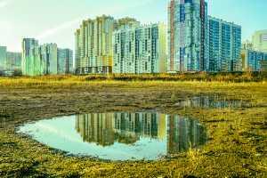 Major drive to revive wetlands, ponds, in Noida