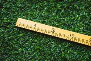Local land measurement units in India
