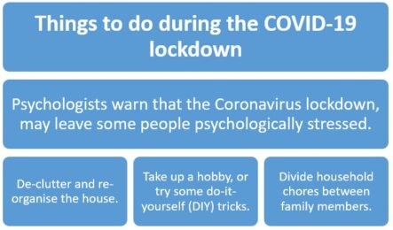 5 ways to make your home a better place during the COVID-19 lockdown
