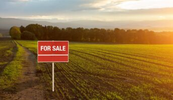 Investing in land: Here's what you should know