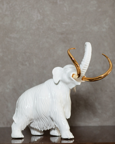 Vastu Tips For Using Elephant In Your Home Decor Housing News