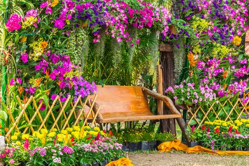 Tips for house garden design