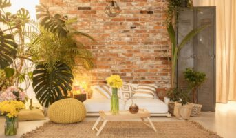 How to go about designing an indoor garden