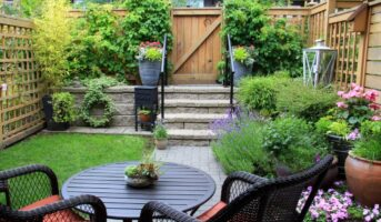 Tips to set up your own backyard garden