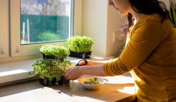 What is micro gardening?